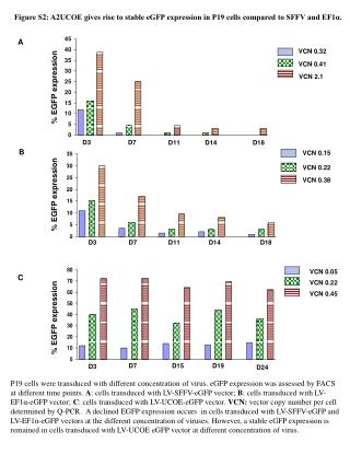 Figure S2: A2UCOE gives rise to stable eGFP expression in P19 cells compared to SFFV and EF1α.