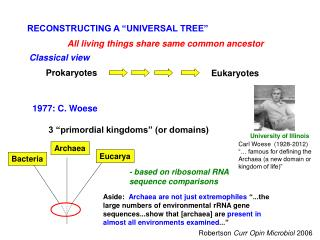 "RECONSTRUCTING A ""UNIVERSAL TREE"""