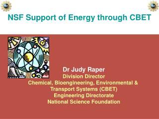 NSF Support of Energy through CBET