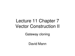 Lecture 11 Chapter 7 Vector Construction II