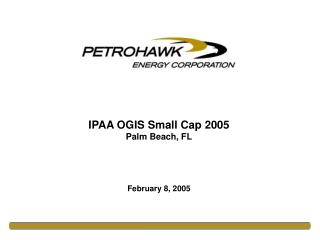 IPAA OGIS Small Cap 2005 Palm Beach, FL    February 8, 2005