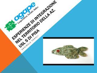 E sperienze  di integrazione nel territorio della Az. USL 5 di Pisa