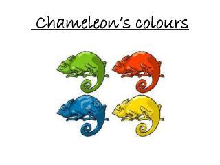 Chameleon's colours