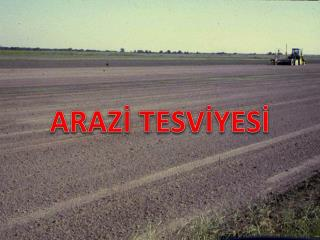 ARAZ? TESV?YES?