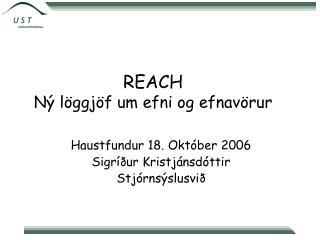 REACH Ný löggjöf um efni og efnavörur