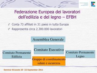 Federazione Europea dei lavoratori dell'edilizia e del legno –  EFBH