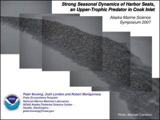 Strong Seasonal Dynamics of Harbor Seals, an Upper-Trophic Predator in Cook Inlet