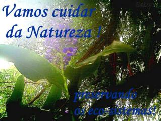 Vamos cuidar da Natureza