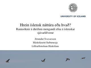 Hrein íslensk náttúra eða hvað?  Rannsóknir á áhrifum mengandi efna á íslenskar sjávarlífverur