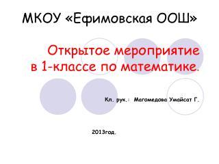 МКОУ «Ефимовская ООШ»