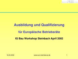 Ausbildung und Qualifizierung für Europäische Betriebsräte IG Bau Workshop Steinbach April 2002