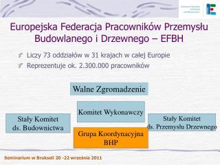 Europejska Federacja Pracowników Przemysłu Budowlanego i Drzewnego – EFBH