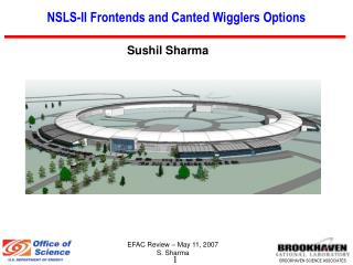 NSLS-II Frontends and Canted Wigglers Options
