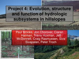 Project 4: Evolution, structure and function of hydrologic subsystems in hillslopes