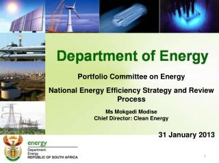 Portfolio Committee on Energy  National Energy Efficiency Strategy and Review  Process