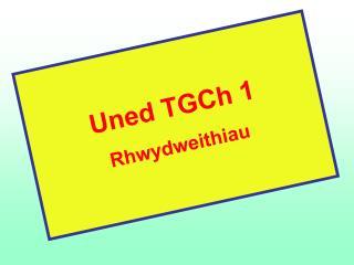 Uned TGCh 1 Rhwydweithiau