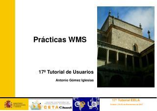 Prácticas WMS