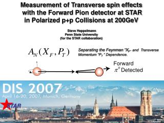 Measurement of Transverse spin effects  with the Forward Pion detector at STAR