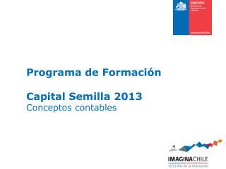 Programa de Formación  Capital Semilla  2013 Conceptos contables