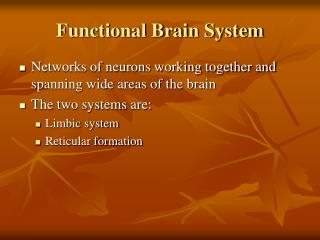 Functional Brain System
