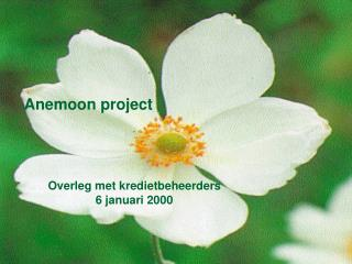 Anemoon project