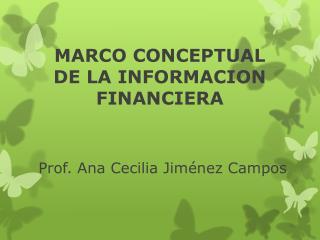 MARCO CONCEPTUAL DE LA INFORMACION FINANCIERA