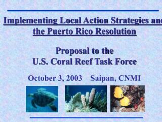 Implementing Local Action Strategies and the Puerto Rico Resolution Proposal to the