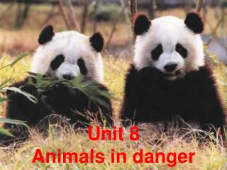 Unit 8  Animals in danger