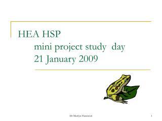 HEA HSP     mini project study  day 21 January 2009