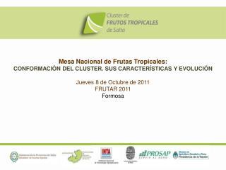 Mesa Nacional de Frutas Tropicales:  CONFORMACIÓN DEL CLUSTER. SUS CARACTERÍSTICAS Y EVOLUCIÓN