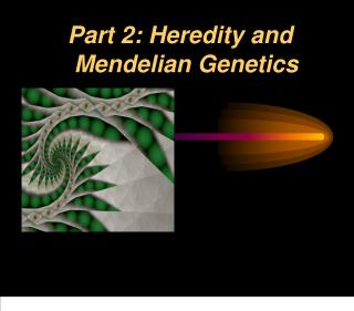 Part 2: Heredity and 