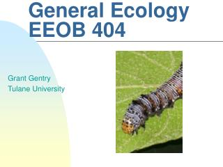 General Ecology EEOB 404