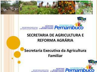 SECRETARIA DE AGRICULTURA E REFORMA AGRÁRIA Secretaria Executiva da Agricultura Familiar