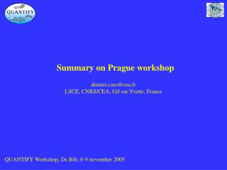 Summary on Prague workshop