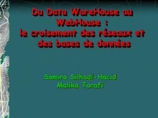 Du Data WareHouse au  WebHouse :  le croisement des réseaux et  des bases de données