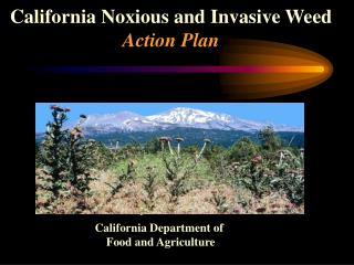 California Noxious and Invasive Weed  Action Plan