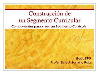Construcci�n  de  un  Segmento  Curricular