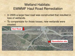 Wetland Habitats:  EMWMF Haul Road Remediation