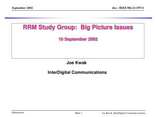 RRM Study Group:  Big Picture Issues 10 September 2002