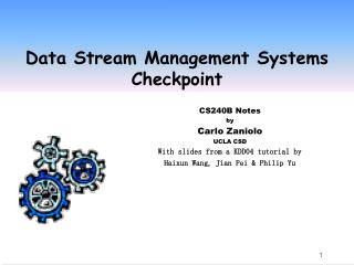 Data Stream Management Systems Checkpoint
