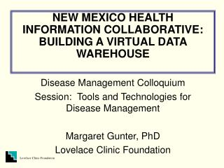 NEW MEXICO HEALTH INFORMATION COLLABORATIVE: BUILDING A VIRTUAL DATA WAREHOUSE