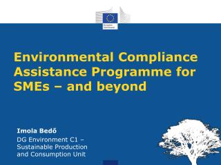 Environmental Compliance Assistance Programme for SMEs – and beyond