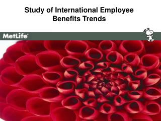 Study of International Employee  Benefits Trends