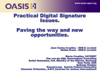 Practical Digital Signature Issues. Paving the way and new opportunities.