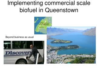 Implementing commercial scale  biofuel in Queenstown