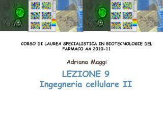 LEZIONE 9 Ingegneria cellulare II