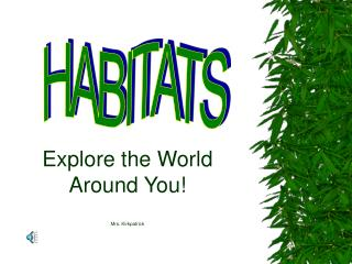 Explore the World Around You  Mrs. Kirkpatrick