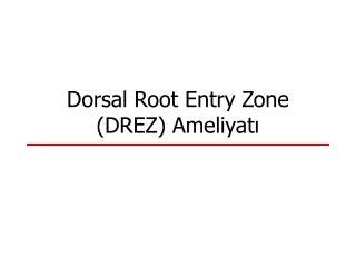 Dorsal Root Entry Zone (DREZ) Ameliyatı
