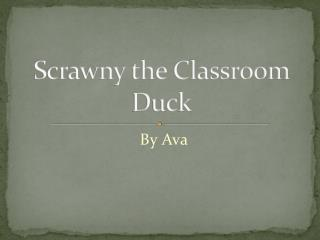 Scrawny the Classroom Duck