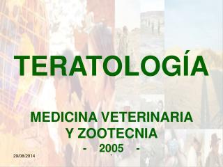 TERATOLOGÍA MEDICINA VETERINARIA  Y ZOOTECNIA -    2005    -